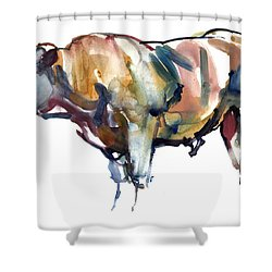 After Sunset Shower Curtain by Mark Adlington