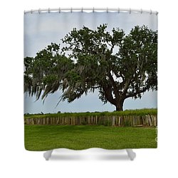 After The Battle Shower Curtain by Alys Caviness-Gober