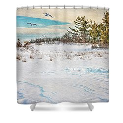 After The Blizzard Shower Curtain