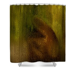 After The Goodbye  Shower Curtain by Jack Zulli