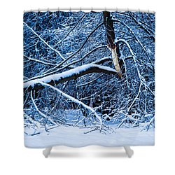 After The Icy Rain - Featured 3 Shower Curtain by Alexander Senin