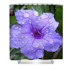 Shower Curtain featuring the photograph After The Rain #1 by Robert ONeil