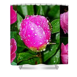 After The Rain Shower Curtain by Eunice Miller