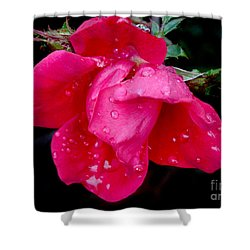 After The Rain Shower Curtain by Mariarosa Rockefeller