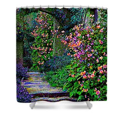 After The Rain Shower Curtain by Michele Avanti