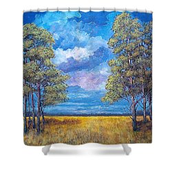 After The Rain Shower Curtain by Suzanne Theis