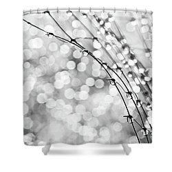 After The Rain Shower Curtain by Theresa Tahara