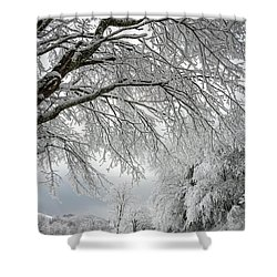 After The Snow Storm Shower Curtain by John Haldane