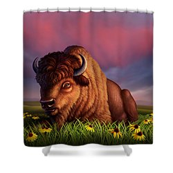 After The Storm Shower Curtain by Jerry LoFaro