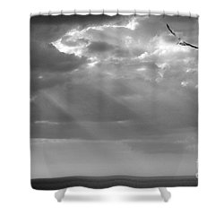 After The Storm Shower Curtain by Mariarosa Rockefeller