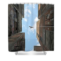 Afternoon Alley Shower Curtain by Cynthia Decker