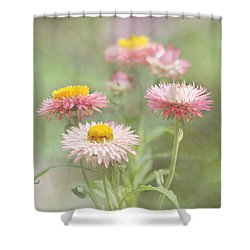 Afternoon Delight Shower Curtain by Kim Hojnacki
