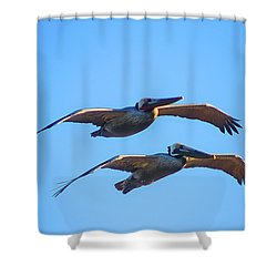 Afternoon Flight. Shower Curtain