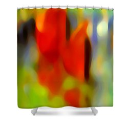 Afternoon In The Park Shower Curtain by Amy Vangsgard