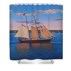 Afternoon Sail Shower Curtain by Dianne Panarelli Miller