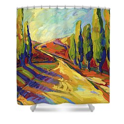 Afternoon Shadows Shower Curtain