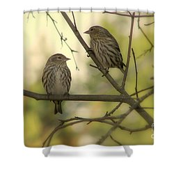 Afternoon Sit Shower Curtain