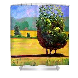 Afternoon Sun Shower Curtain by Nancy Merkle