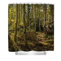 Afternoon Walk Shower Curtain