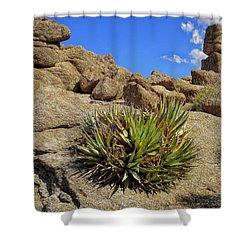 Against The Odds Shower Curtain by Michael Pickett