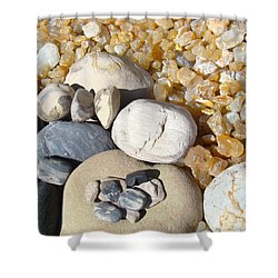 Agates Rocks Art Prints Petrified Wood Fossils Shower Curtain by Baslee Troutman