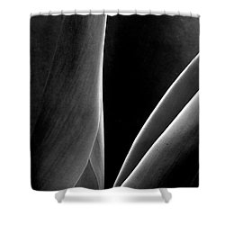 Agave Shower Curtain by Ben and Raisa Gertsberg