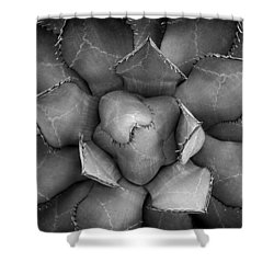 Agave Black And White Abstract Shower Curtain by Adam Romanowicz