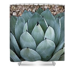 Agave Shower Curtain by Lana Enderle