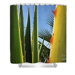 Agaves And Palm Trees Shower Curtain