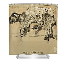 Agglomeration Shower Curtain by Cecil Charles Windsor Aldin