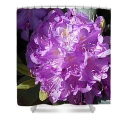 Ah Rhododendron Shower Curtain