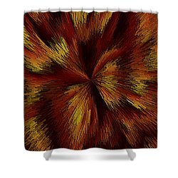 Ahelud Shower Curtain