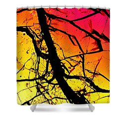 Ahumada Shower Curtain
