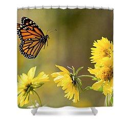 Air Monarch Shower Curtain