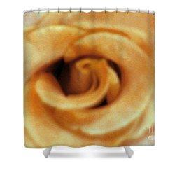 Airbrush Rose Shower Curtain