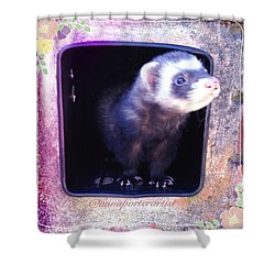 Airmail Ferret Shower Curtain