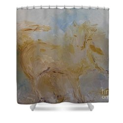 Airwalking Shower Curtain