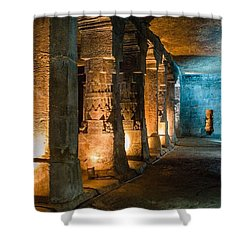 Ajanta Caves Shower Curtain