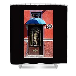 Shower Curtain featuring the photograph Ajijic Door #8 by PJ Boylan