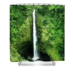 Shower Curtain featuring the photograph Akaka Falls by Kristine Merc
