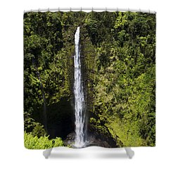 Akaka Falls Shower Curtain by Mike Herdering