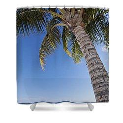 Ala Moana Beach Shower Curtain by Brandon Tabiolo