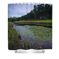 Alabama Country Shower Curtain by Julie Andel