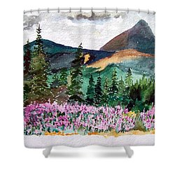 Alaska - Cantwell Shower Curtain