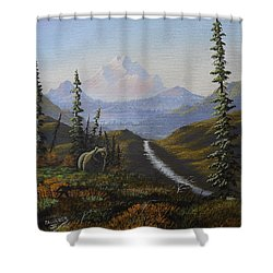 Alaskan Brown Bear Shower Curtain
