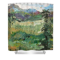 Alaskan Landscape Shower Curtain