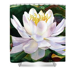 Alba Flora Shower Curtain by Karen Mattson