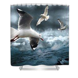 Albatross Shower Curtain