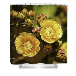 'albispina' Cactus #3 Shower Curtain