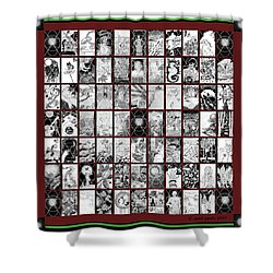 Shower Curtain featuring the painting Album Quilt Subdued by Carol Jacobs